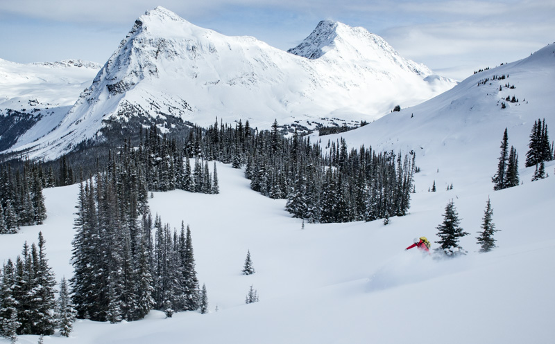 Snowboarder riding powder at the Mallard Mountain Lodge in the Rocky Mountains of BC