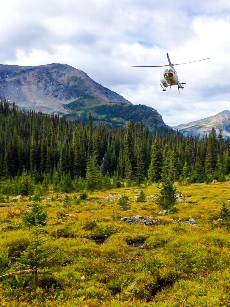 Helicopter landing to pick up hikers at the Mallard Mountain Lodge BC
