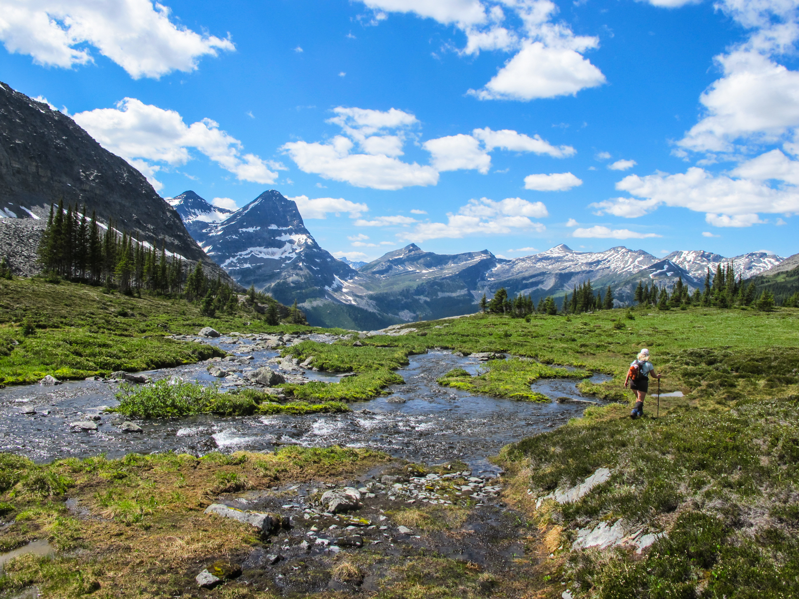 Lone hiker in a grassy meadow with a stream in the mountains
