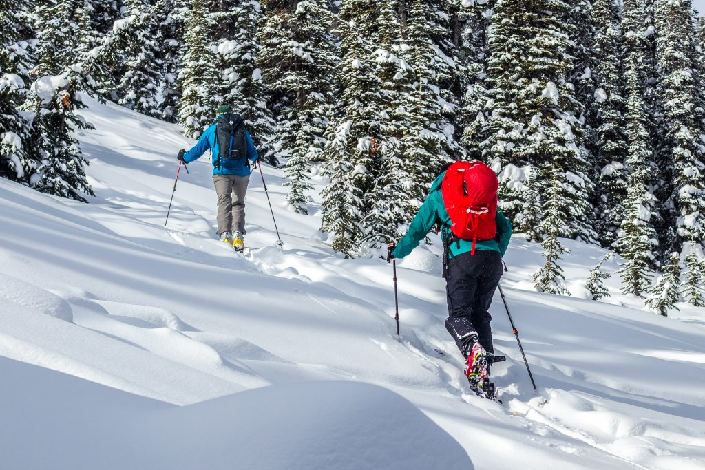 man and woman ski touring up a slope in between trees