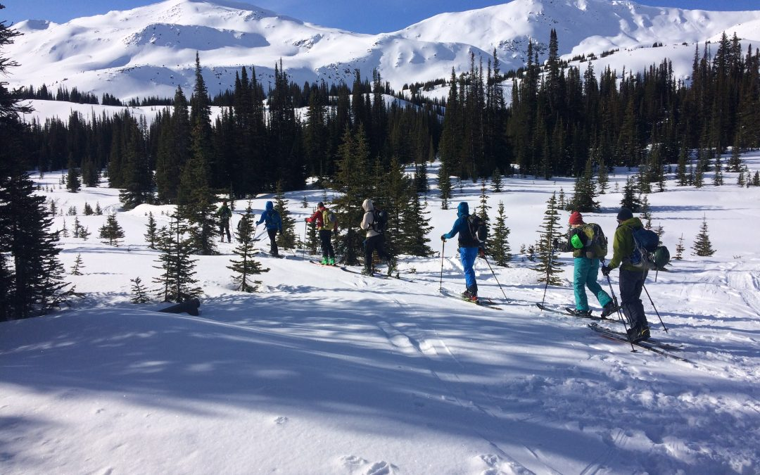 Beginners Guide, Backcountry Skiing & Snowboarding, Part 2