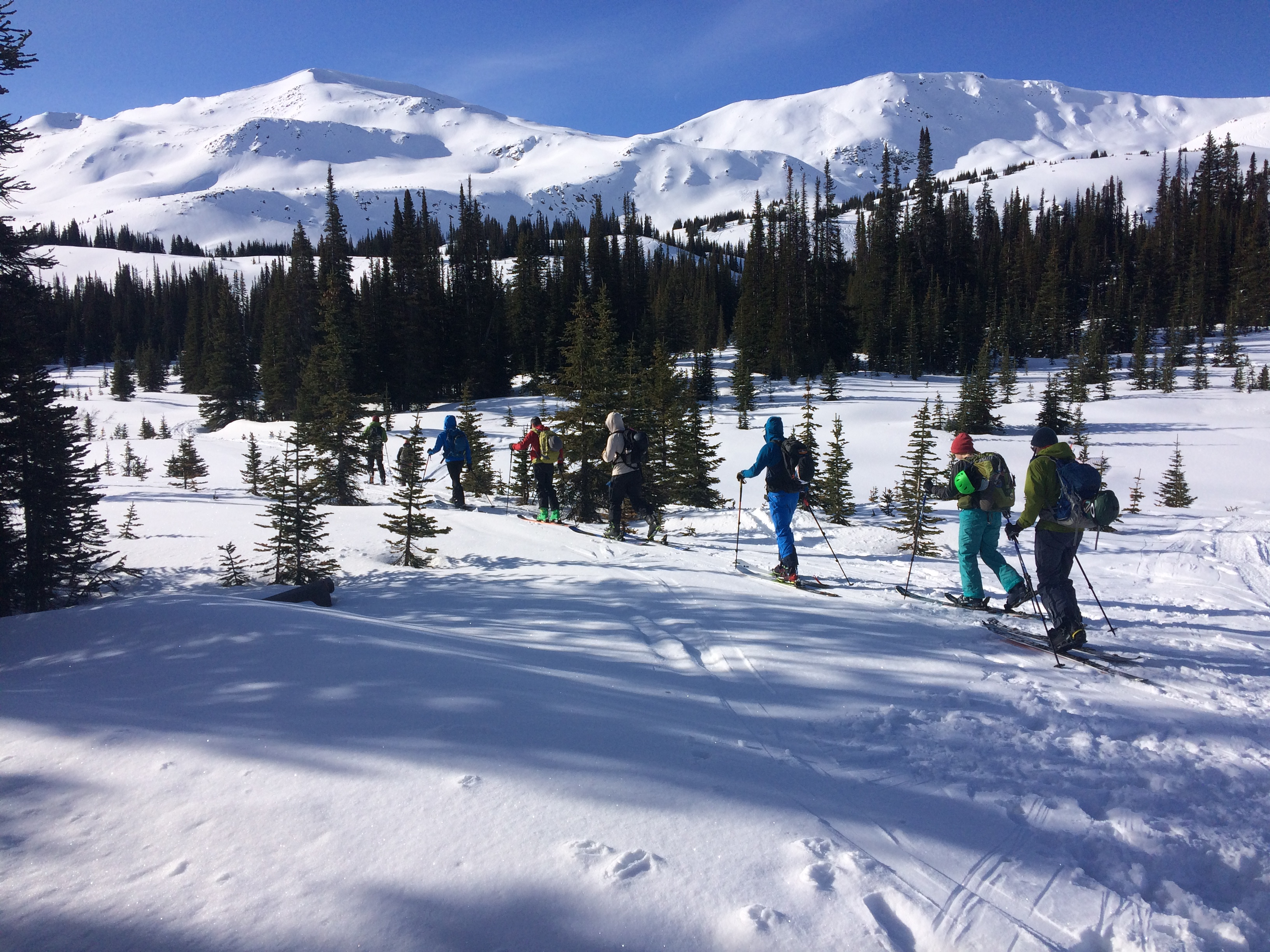 Group of skiers heading out on their first ski tour in the Canadian Rockies